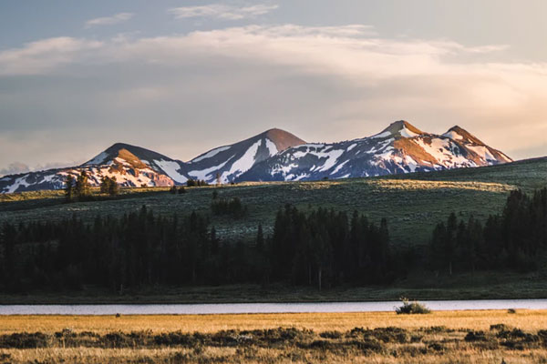Best Time to Visit Yellowstone for Your Wildlife Adventure