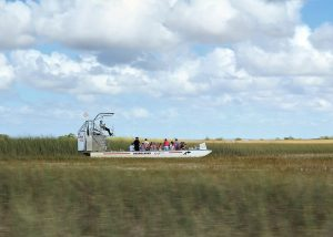 Riding in an airboat in the Everglades