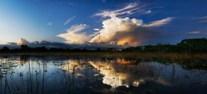 Sky over the Everglades