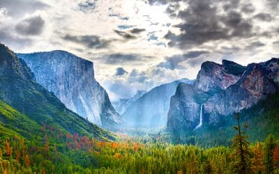Importance of National Parks – Why These Natural Wonders Need to Be Protected