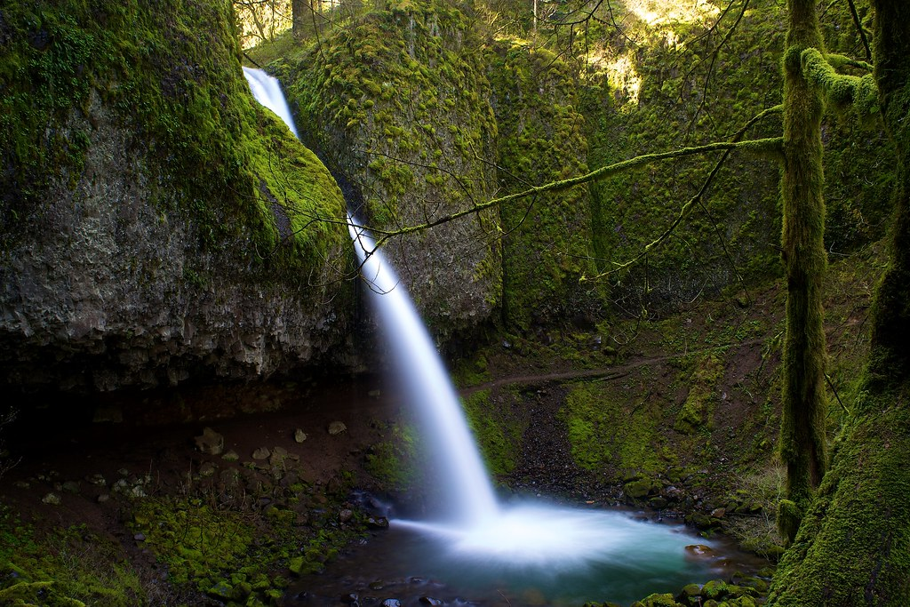 The Horsetail Falls are one of the three best waterfalls in Oregon to visit on a day trip