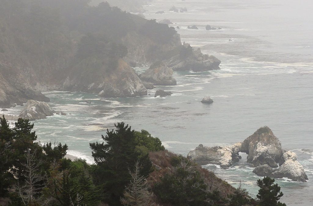 Pfeiffer Big Sur State Park: 5 Ways To Make Your Visit Unforgettable