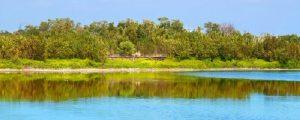 Echo Pond aat Everglades National Park