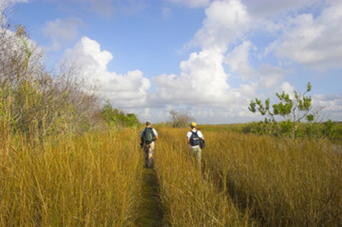 Hikers at Everglades National Park