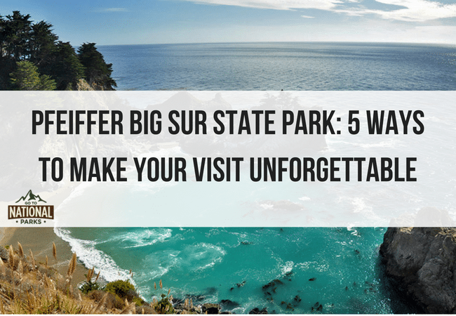 Pfeiffer Big Sur State Park: 5 Ways To Make Your Visit Unforgettable