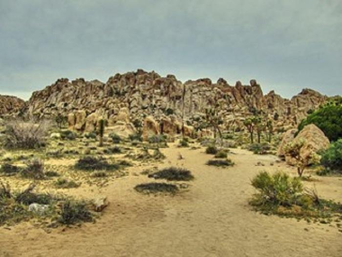 Rock formations of Joshua Tree Mojave National Preserve Park - California