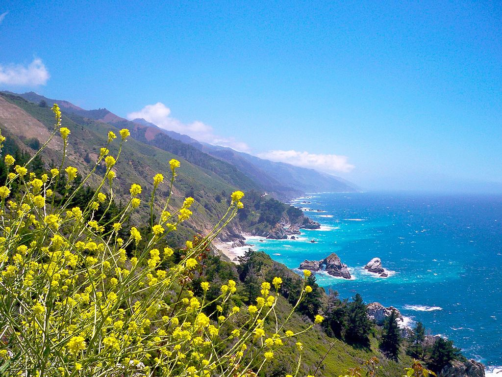 Big Sur Coastline view by Julia Pfeiffer Burns State Park