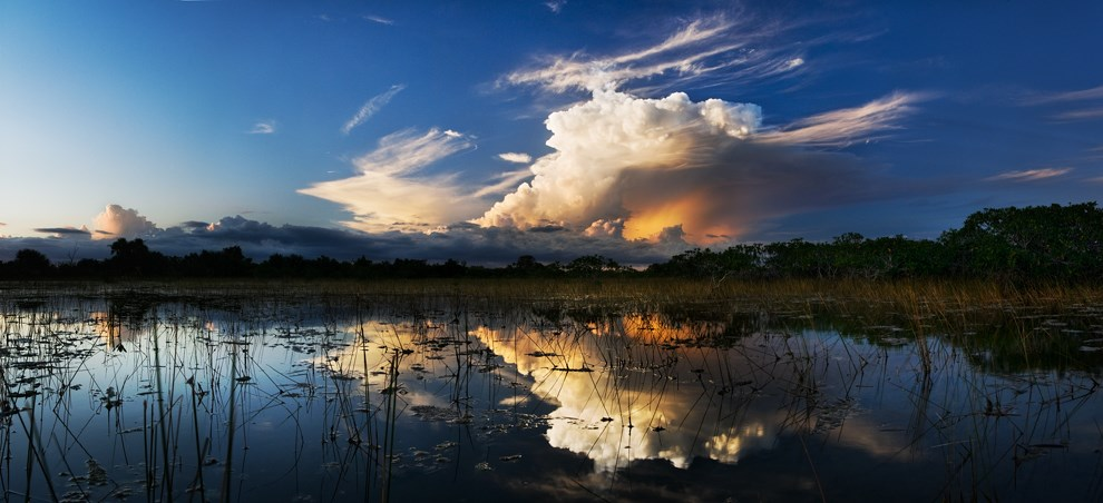 Reflections of a cloudy sky over Florida's wetlands