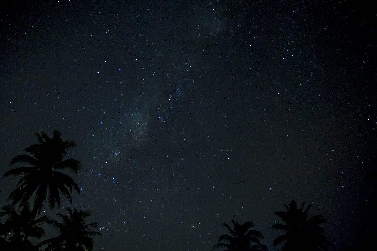 Star gazing at Everglades National Park