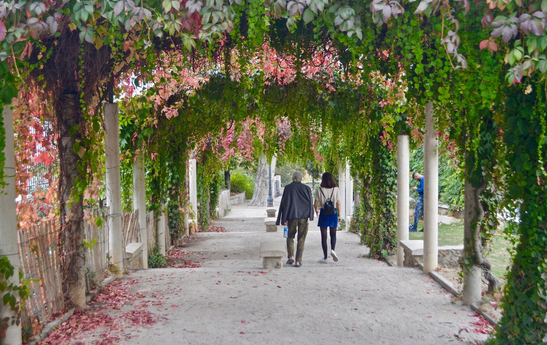 couple walking on pathway with flowering vines at woodward park
